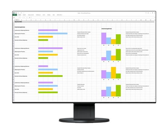 "EIZO 24"" EV2456-BK, 1920 x 1200, IPS,16:10, 5ms, 350 cd/m2, 1000:1, DP/HDMI/DVI/Dsub, ultraslim 1 mm rám., černý"
