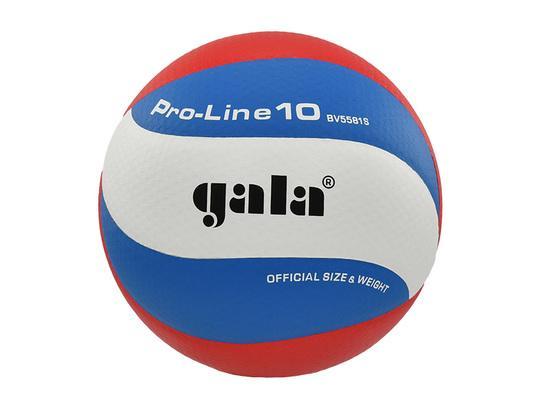 Volejbalový míč GALA Pro Line 10 - BV 5581 S