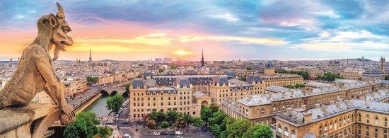 TREFL Panoramatické puzzle Výhled z katedrály Notre-Dame 1000 dílků