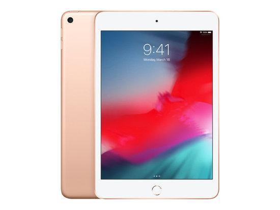 iPad mini Wi-Fi 256GB - Gold
