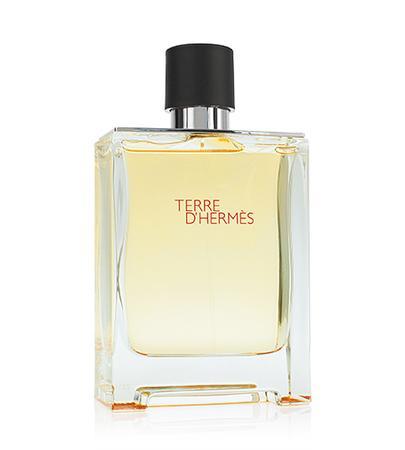 Hermes Terre d`Hermes toaletní voda 200ml Pro muže TESTER