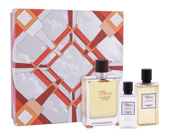 Parfémovaná voda Hermes - Terre d´Hermes 100 ml